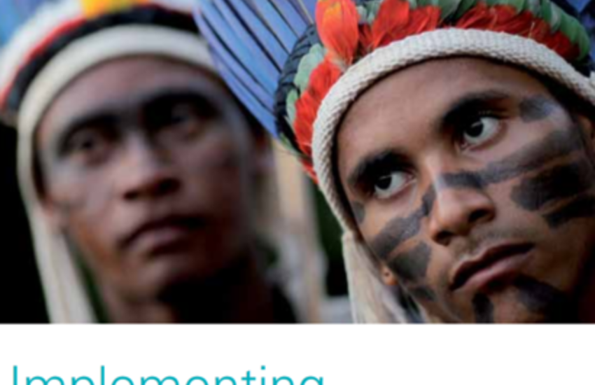 Protecting rights of indigenous peoples